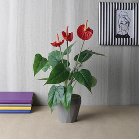 Artificial Red Anthurium Potted Plant