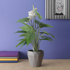 Artificial White Anthurium Potted Plant