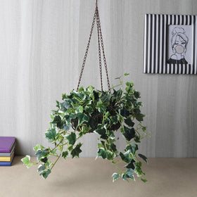 Flowing Artificial English Ivy Plant in Basket