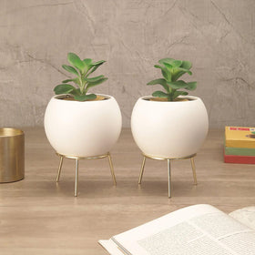 Set of White Cauldron Planters with Stand