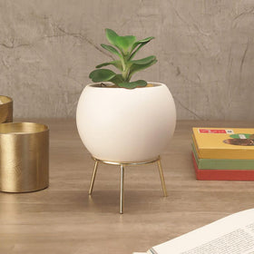 White Cauldron Planter with Stand