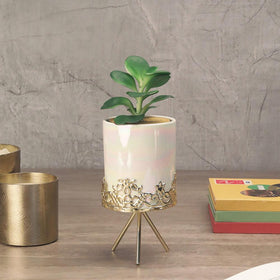 Pearl-Glossed White Planter