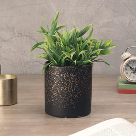 Goldburst Black Planter