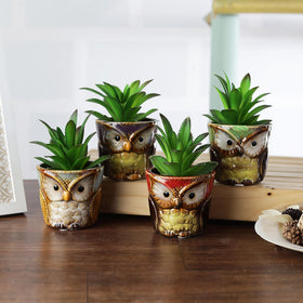 Hoot-Hoot Mini Owl Planters Set