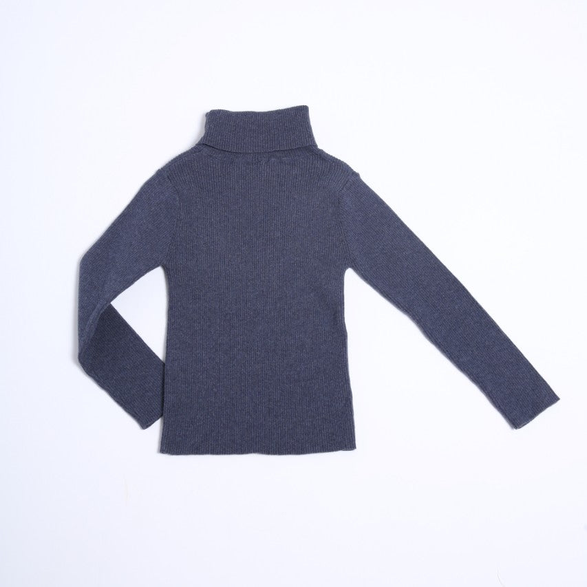 Slim Fit Ribbed Turtleneck