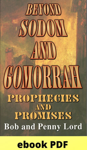 Beyond Sodom and Gomorrah ebook PDF ebook PDF Bob and Penny Lord Ministry