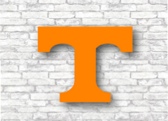 University of Tennessee - Vols