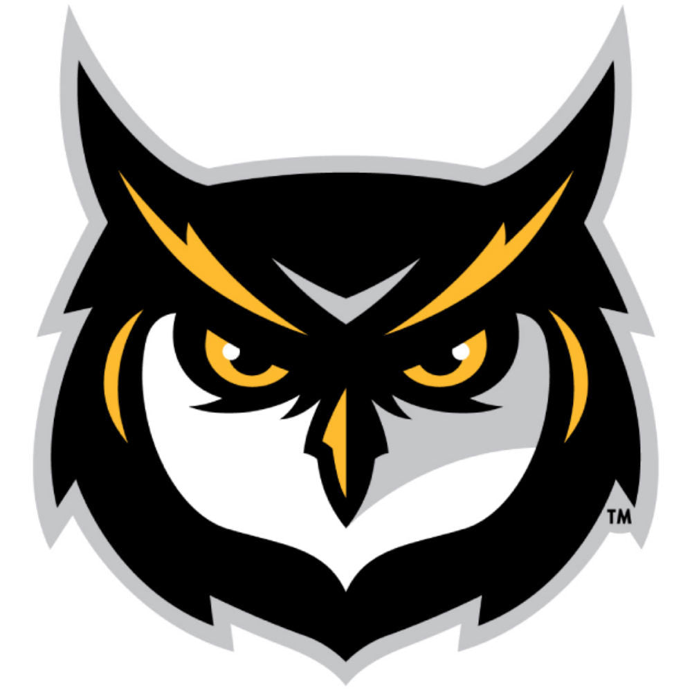 Kennesaw State Owls KSU Owl Logo Decal Sticker 3""