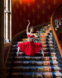 Le Corsaire, temple dancer, Nikyia dress - Hire only