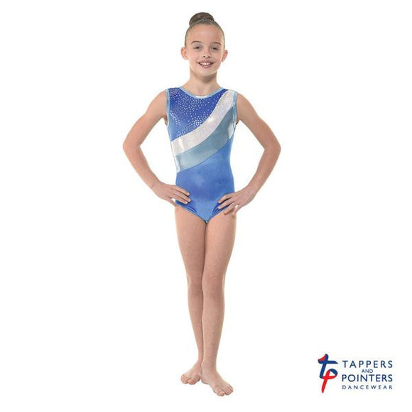 Tappers and Pointers velvet and foil leotard Gym/30