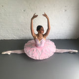 Just Ballet Pink & Silver tutu - Hire only