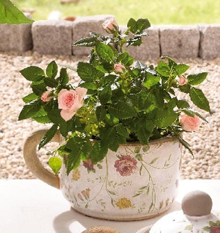 Porcelain Flower Pot - Floral Patterned Pot with Handle, Medium Height