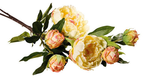 Artificial Yellow and Pink Peonies with Open and Closed Buds, Set of Two