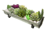 "17 in. Shabby Look Metal Tabletop Planter ""Nostalgia"""