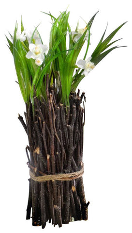 Mini Flowering Twig Bundle - White Narcissus