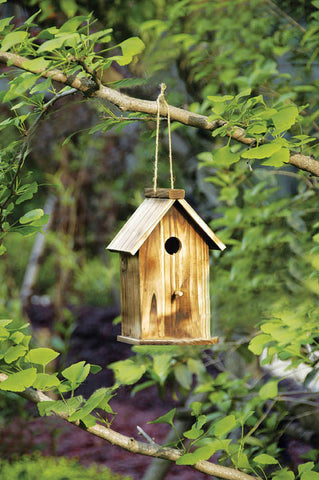 10 in. Tall Ready to Finish Wooden Bird House - Large