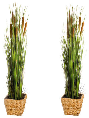 2 Pack Artificial 47 in. Cattails and Reed Grass in Black Pot