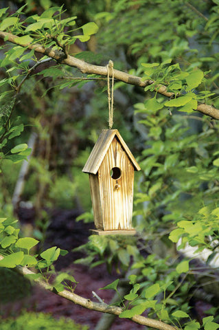 10 in. Tall Ready to Finish Wooden Bird House - Medium