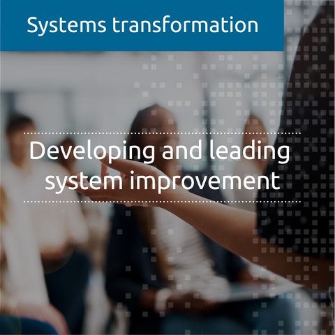 Developing and leading system improvement