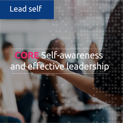 Self-awareness and Effective Leadership (in-house)