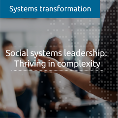 Social systems leadership: Thriving in complexity (in-house)
