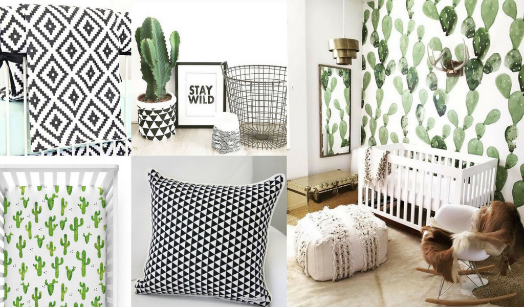 3 Ways to Design a Cactus Nursery | Caden Lane