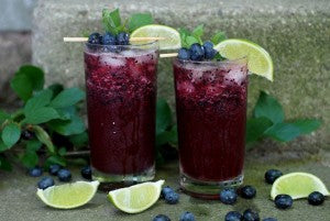 Blueberry Mojito Mocktail for Pregnant Summer Fun
