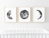 Greer's Midnight Moon Wall Art Bundle
