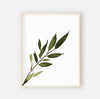 Olive Leaf Digital Nursery Art Print