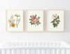 peyton's vintage floral digital wall art bundle