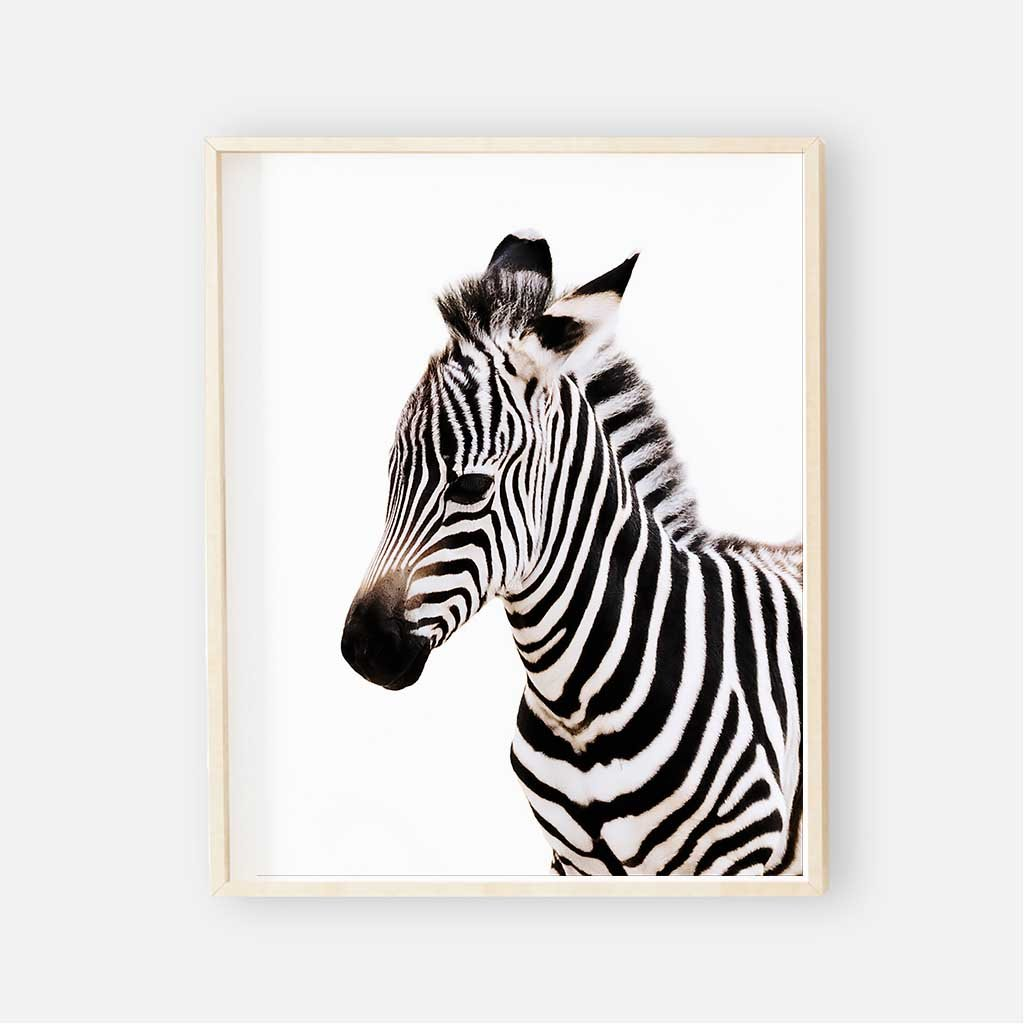 photograph regarding Zebra Printable called Youngster Zebra Electronic Nursery Artwork