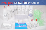 Anatomy & Physiology Starter Kit