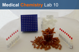 Medical Chemistry Lab 10: Smells Lab