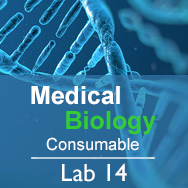 Medical Biology Lab 14: Biodiversity and Health - Consumable