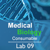 Medical Biology Lab 09: Carrying Capacity - Consumable
