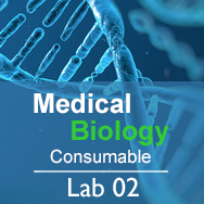 Medical Biology Lab 02: Genes, Proteins, and Disease - Consumable