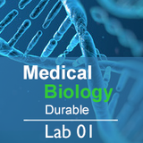 Medical Biology Lab 01: Science and Medicine  - Durable