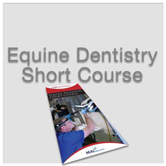 Equine Dentistry Short Course
