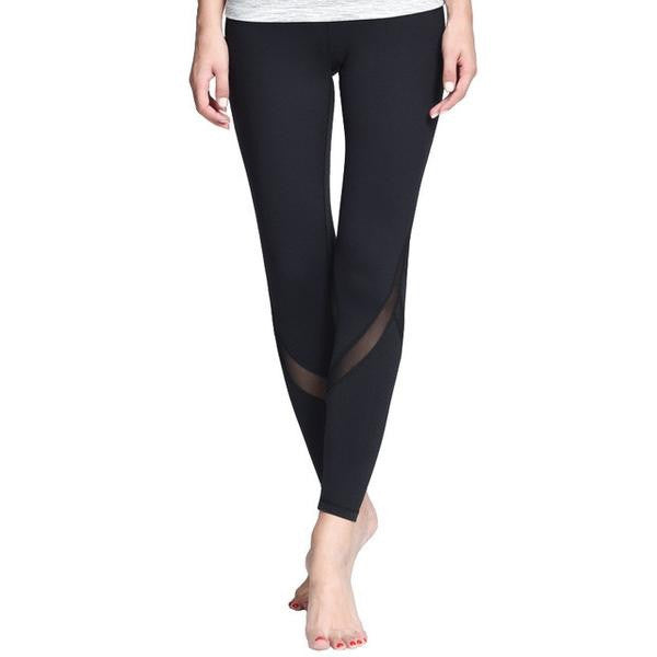 Tight Mesh Legging - Fitness Elephants
