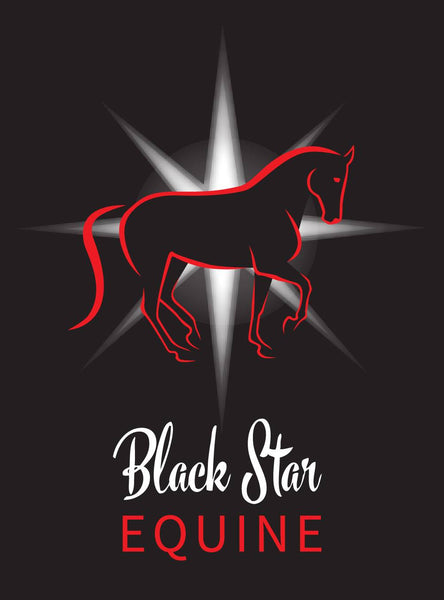 Black Star Equine