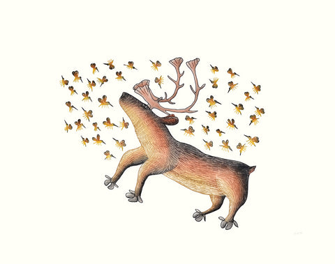 Summer Buzz, by Cee Pootoogook, Cape Dorset Print