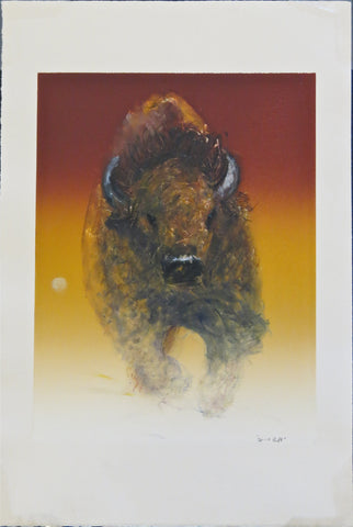 Spirit of Buffalo, by Raymond Nordwall