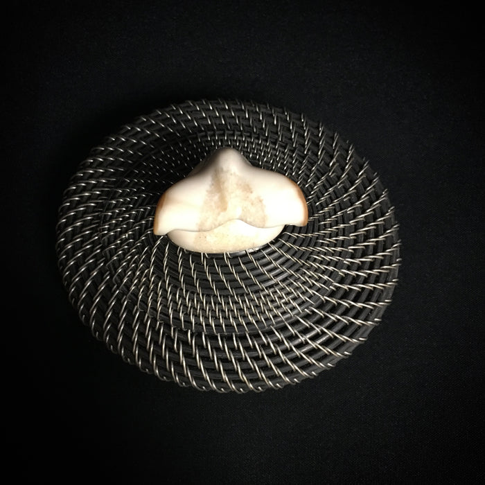 Silver and Baleen Basket with Walrus Ivory Finial, by Don Johnston