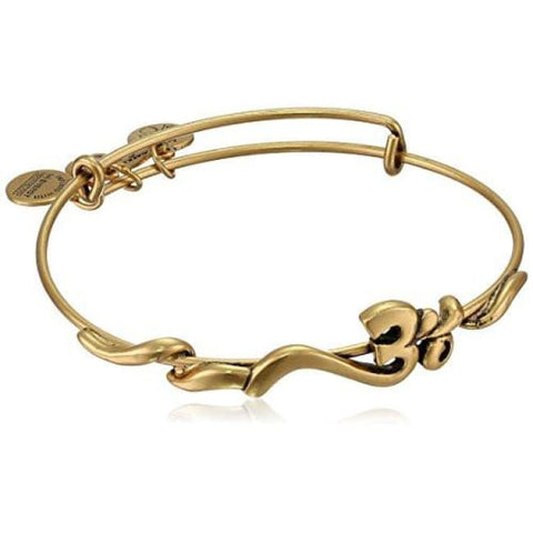 Alex And Ani Spiritual Armour Om Expandable Wire Bangle Bracelet Fashion