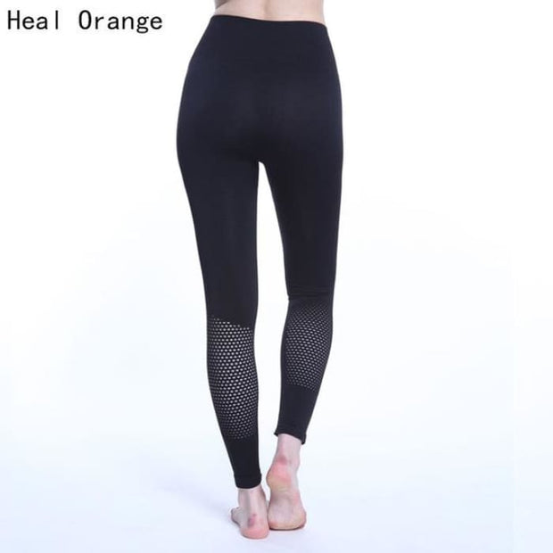 Yoga Pants Women Leggins Sport High Waist Hollow Black / S Yoga Pants