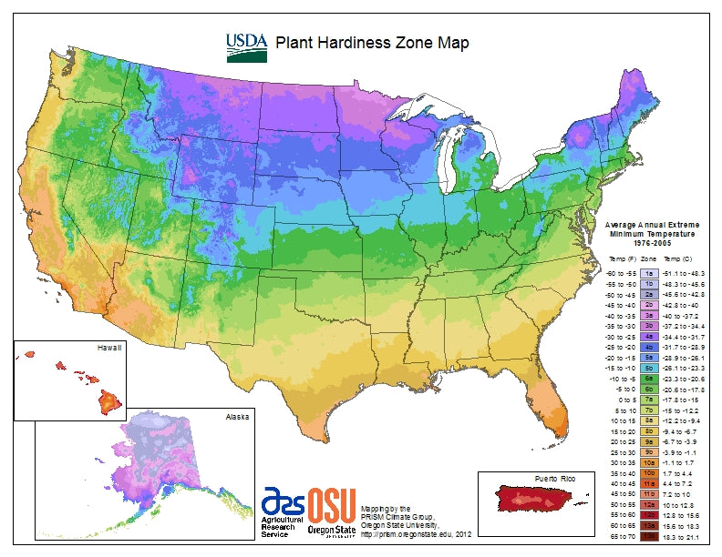 Shop for perennial plants by their USDA Plant Hardiness Zone
