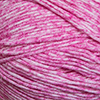 Load image into Gallery viewer, Cascade Yarns: Sarasota
