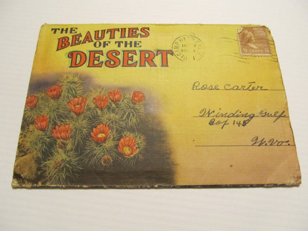the BEAUTIES of the Desert folded booklet Postcards, FREE SHIPPING