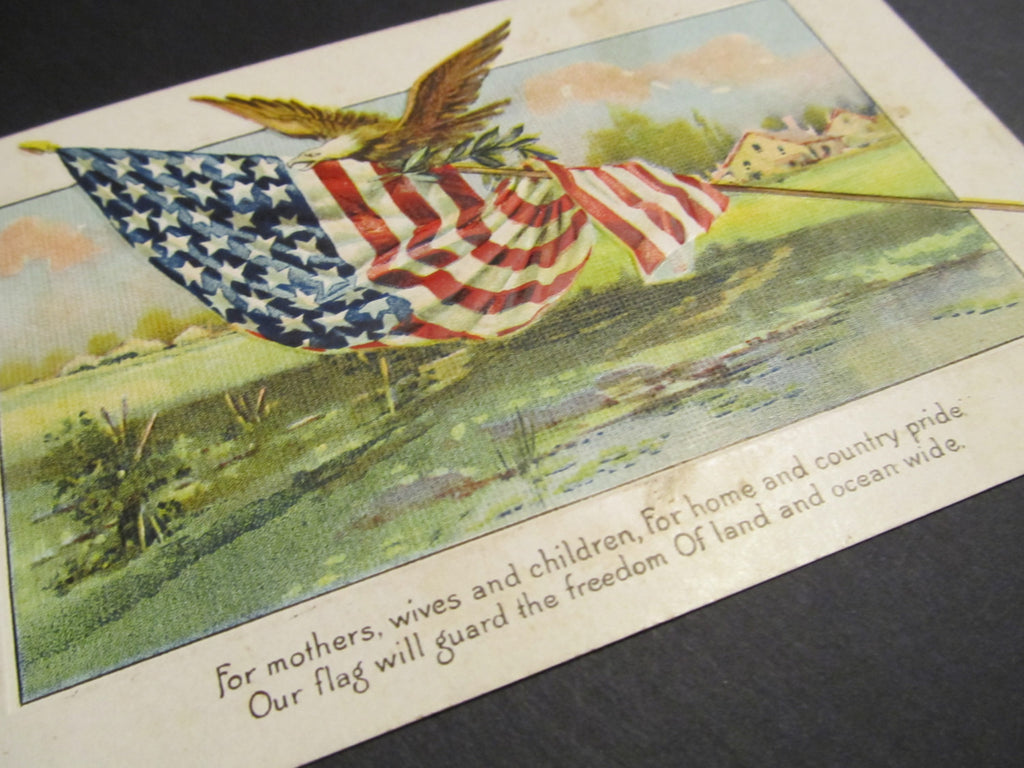 American pride Postcard, FREE SHIPPING