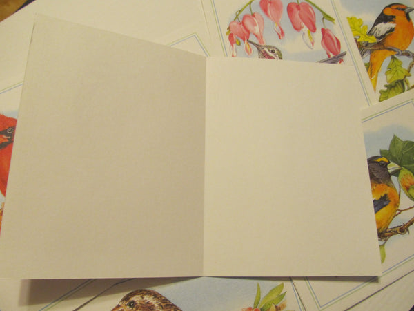 VARIETY pack of BLANK Bird Greeting Cards, FREE Shipping